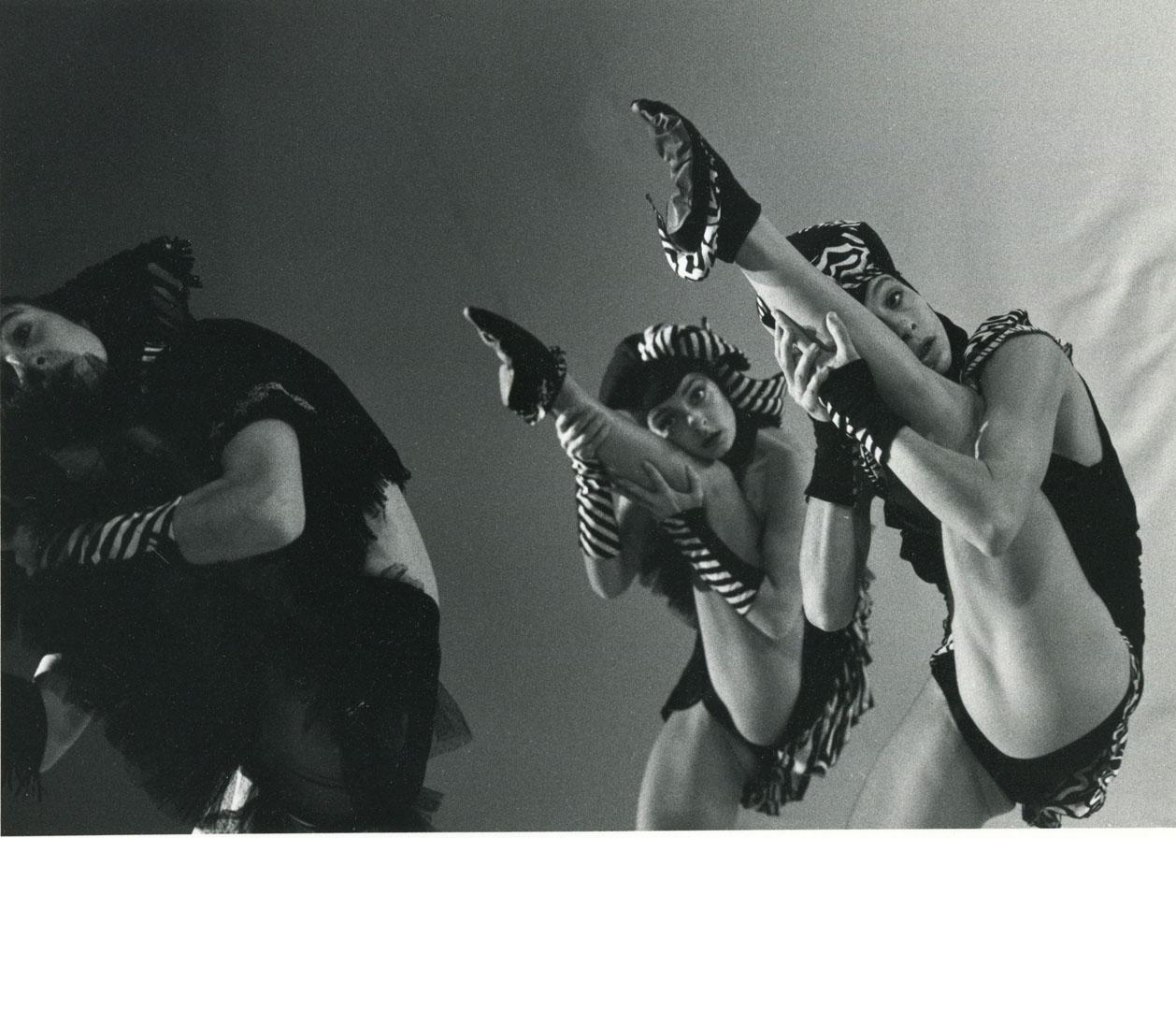14 Ros de la Grange Véronique - gris souris - 1987