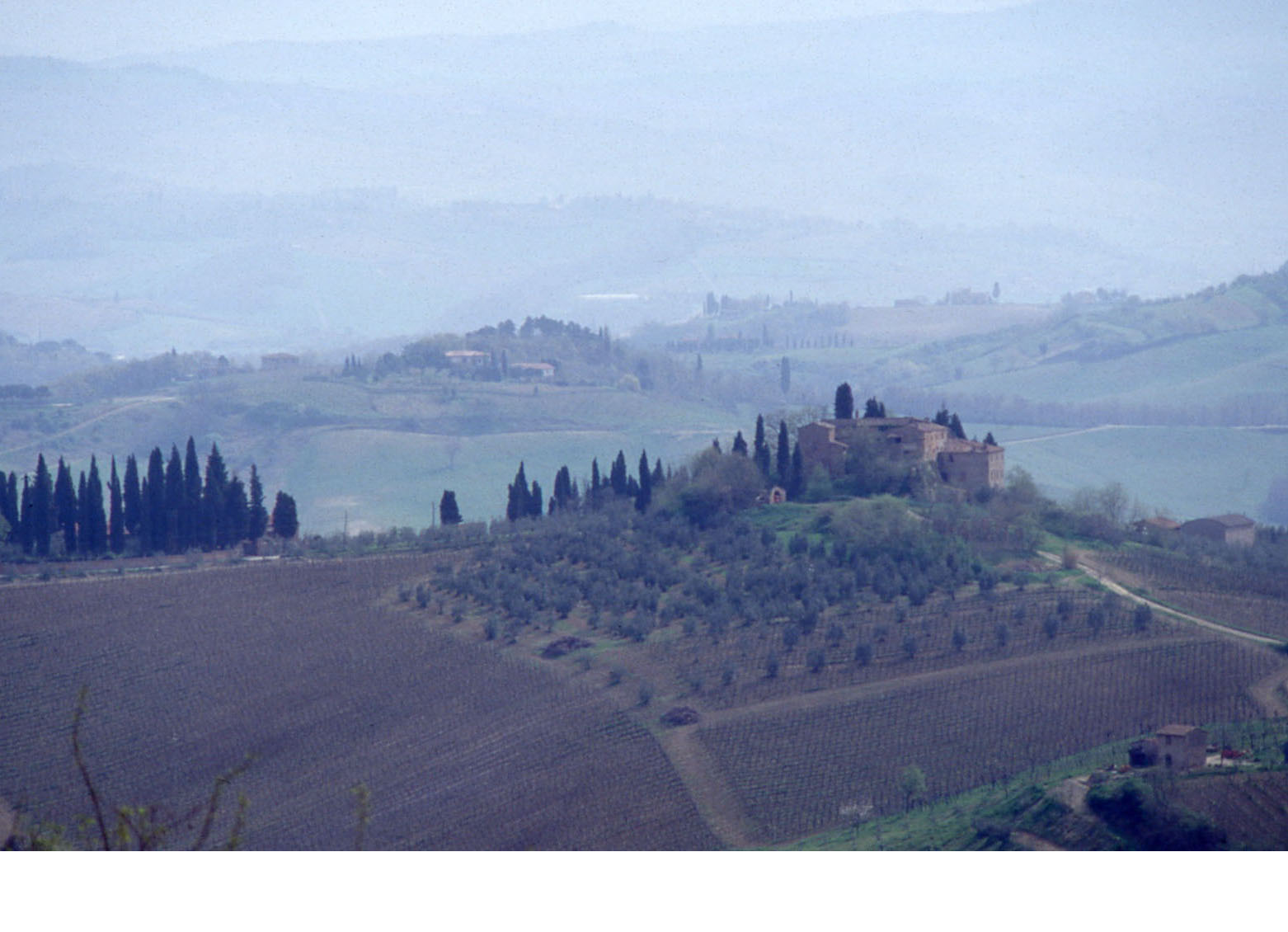 Paysage toscan vers San Gimignano - 1993